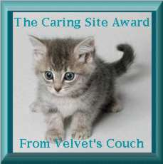 Caring Site Award