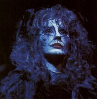 Grizabella the Jellicle Cat