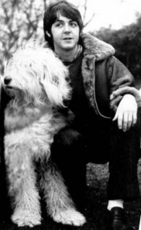 Paul McCartney with his dog Martha