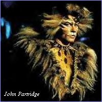 John Partridge as the Rum Tum Tugger in the Cats video